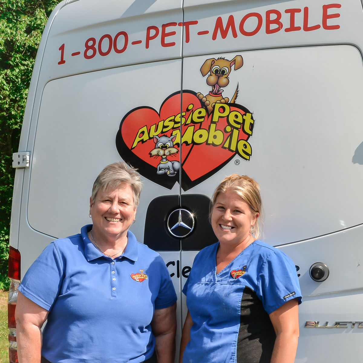 Dog Grooming Pineville Nc