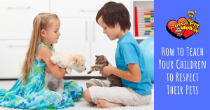How To Teach Your Children To Respect Their Pets